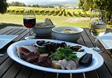 Full-Day Wine Tour - Launceston Tasmania